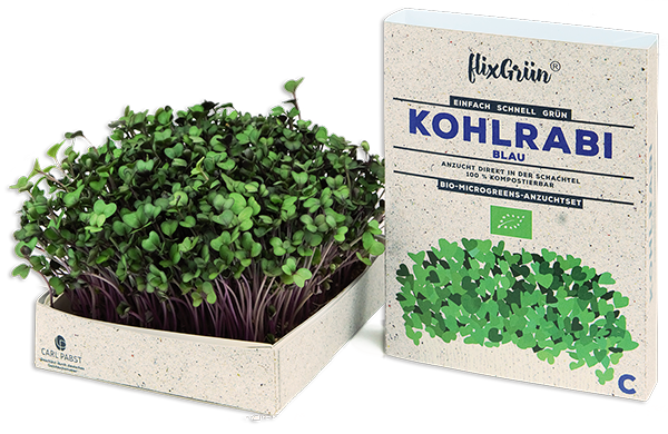 Flixgrün – Mikro-Gemüse aus eigener Ernte